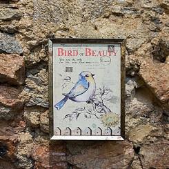 Quadro Moldura Caixa Bird of beauty - 20x15x4